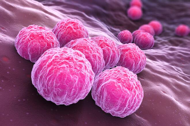 咽頭クラミジアの菌